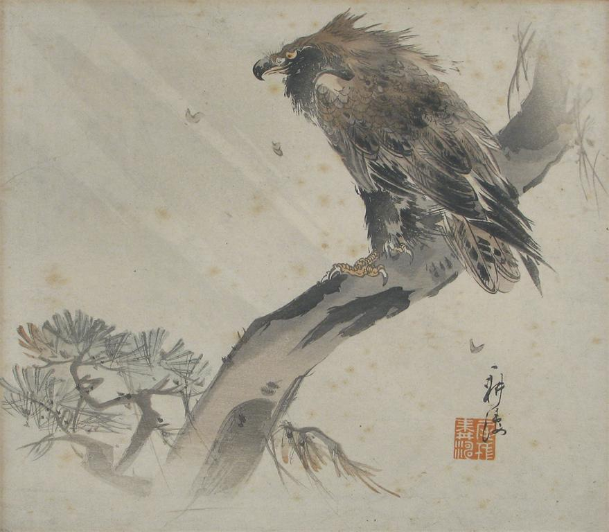 A Japanese watercolour of an old fierce looking raptor
